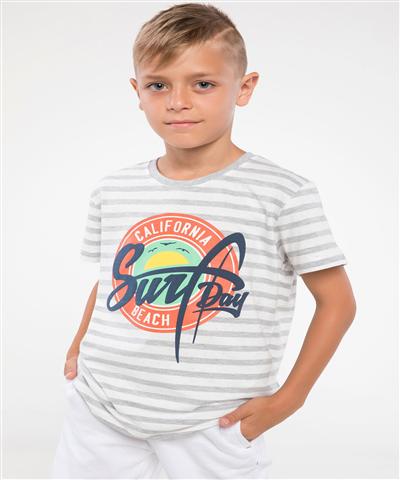 DeFacto Baskılı Çizgili T-shirt Gri